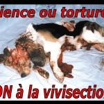 Panneau Science ou torture