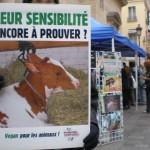 Cyberaction Journée Sans Viande