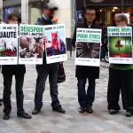 Cyberaction Journée Sans Viande 2012