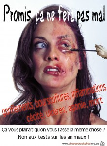 tasmanie retrait d une affiche choc contre les tests de produits cosm tiques sur les animaux. Black Bedroom Furniture Sets. Home Design Ideas