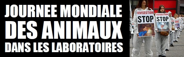 Campagne internationale contre l'expérimentation animale (vivisection)