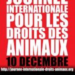 JIDA électronique et droits des animaux
