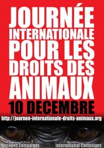 Journée Internationale Droits des Animaux 2012 Besançon