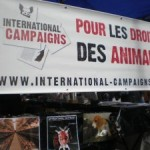 Déroulement des stands mensuels International Campaigns Île-de-France