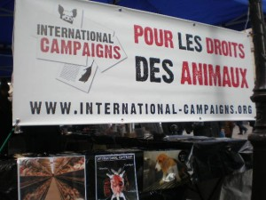Déroulement stand IC IDF