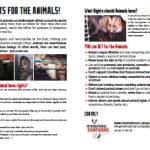 Tract droits des animaux (en anglais)