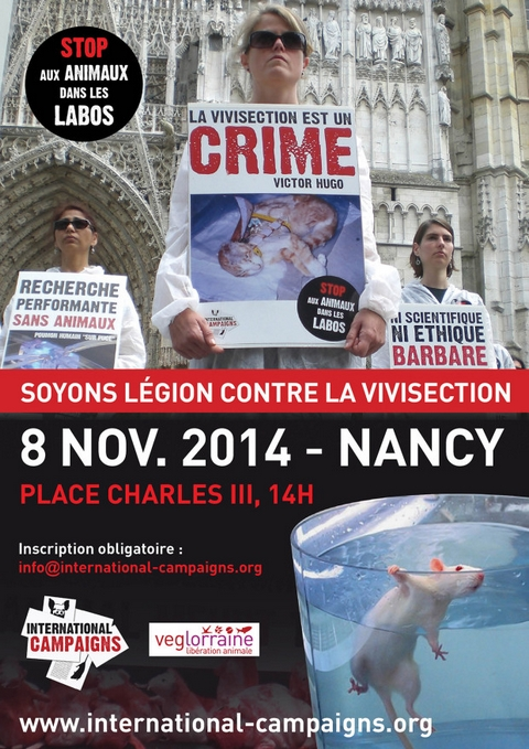 flyer-nancy-620x877