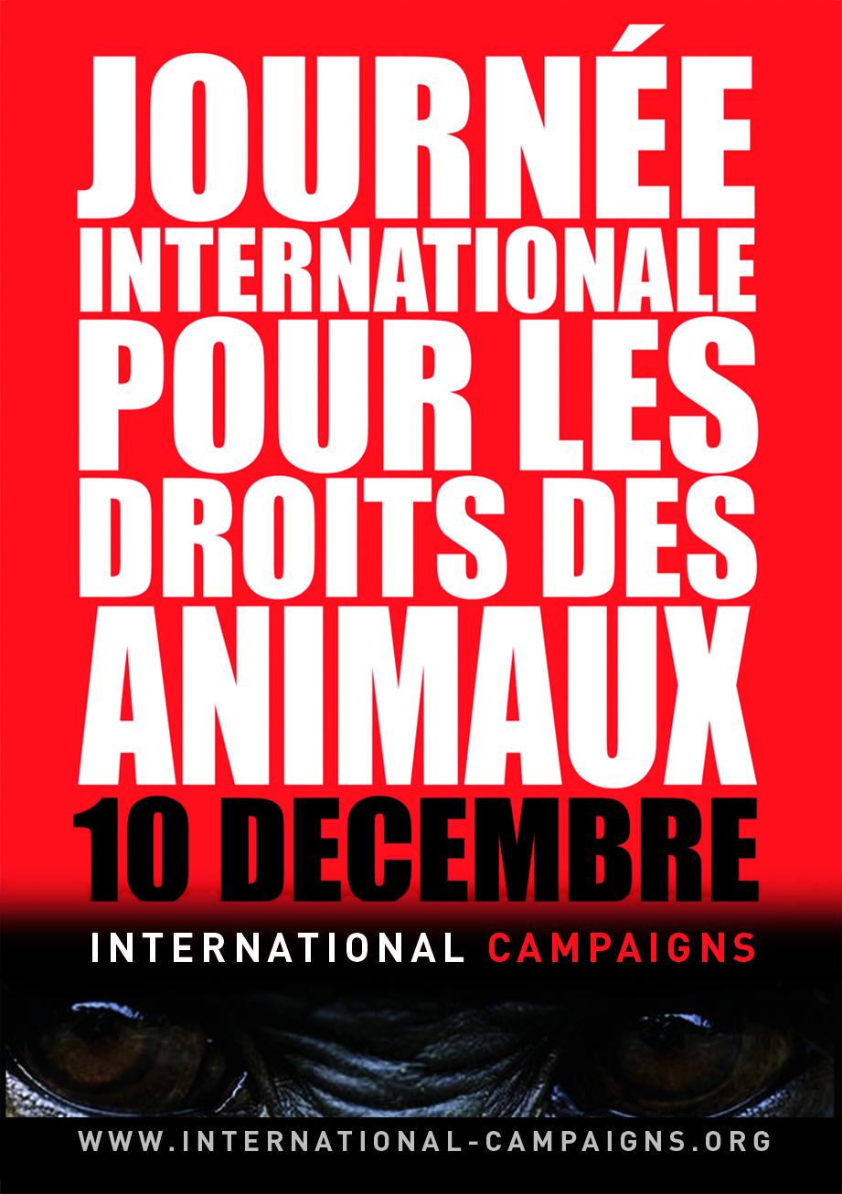Affiche A3 Journée Internationale pour les Droits des Animaux (JPG)