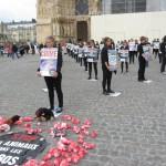 Opération Reims CONTRE la vivisection – 23 mai 2015