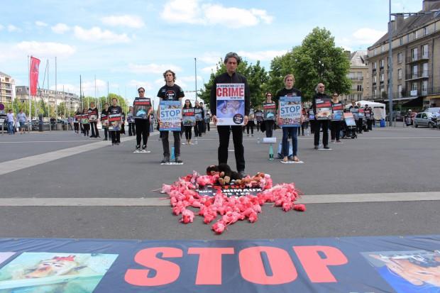 """Opération """"A Caen les méthodes substitutives ?"""" - 30 mai 2015"""