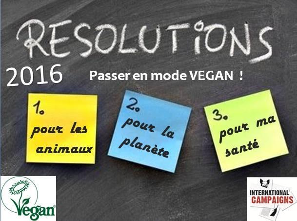 Résolution 2016 : passer en mode vegan