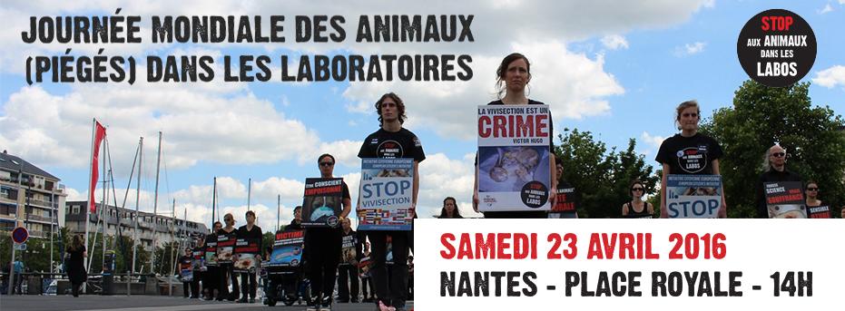 Happening STOP aux animaux dans les labos NANTES 23 avril 2016