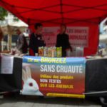LE HAVRE – Un Été Sans Cruauté – 02 juillet 2016