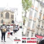 PARIS – Happening et vidéo-sensibilisation au véganisme – Samedi 04 mars 2017