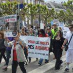 STRASBOURG – Samedi 20 mai 2017 – Marche contre la vivisection