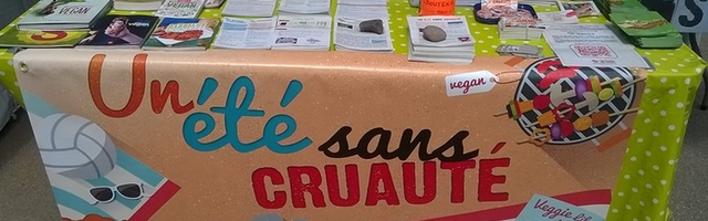 Un Été sans cruauté