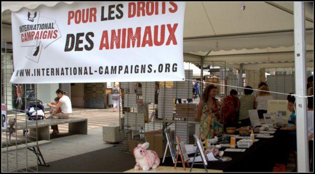 lyon des droits pour les animaux
