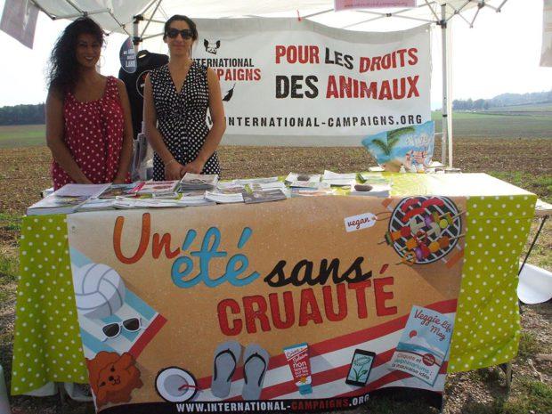 Un été sans cruauté - international campaigns grand est