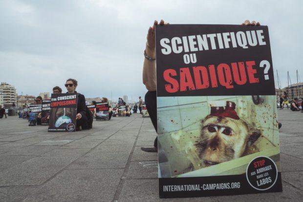 happening stop aux animaux dans les labos - marseille 30.09.17