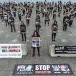 MARSEILLE – Samedi 30.09.2017 – Happening géant STOP aux animaux dans les labos