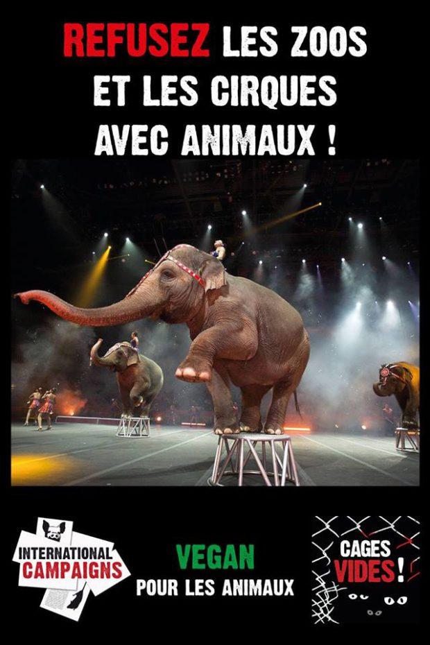 le havre contre les cirques avec animaux