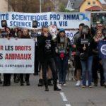 Marche sur Niederhausbergen – Centre de primatologie – 22 octobre 2017