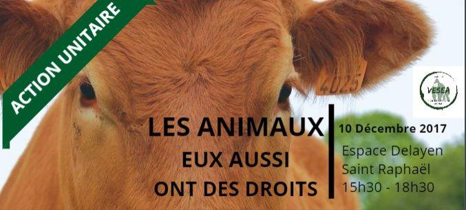 vesea Journée Internationale pour les droits des animaux