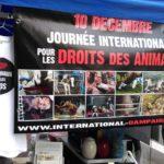 Jeudi 10 décembre 2020 – Revendiquons en ligne des droits pour les animaux