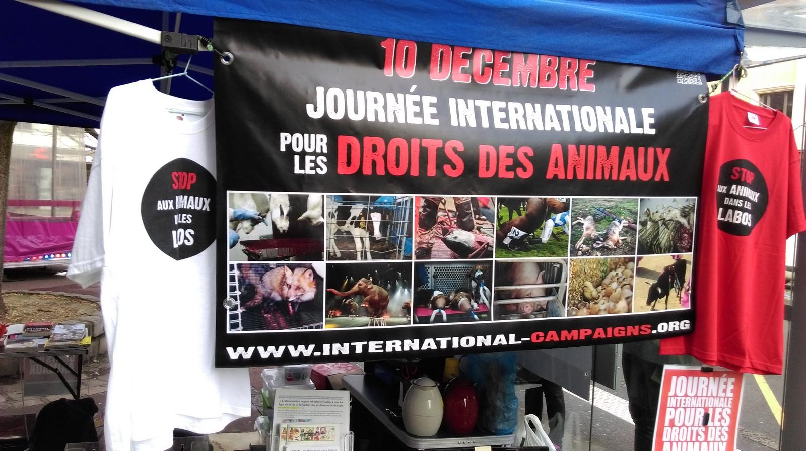 Journée Internationale pour les Droits des Animaux - Evreux